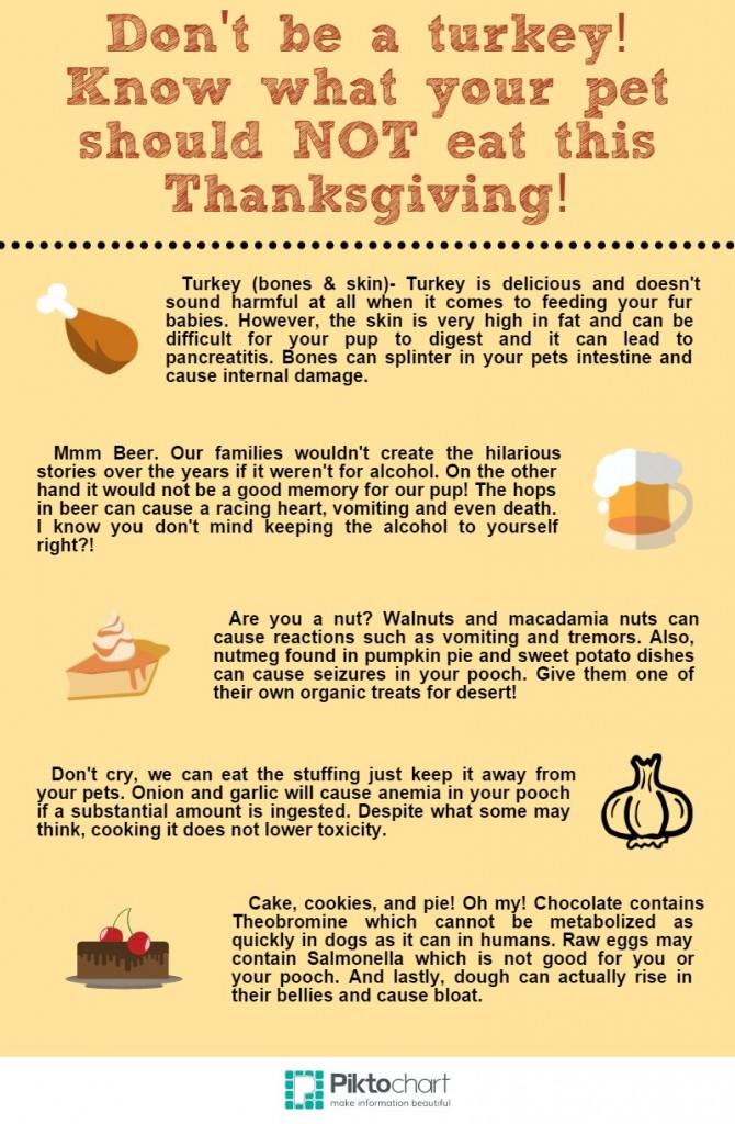 Turkey Day (2)
